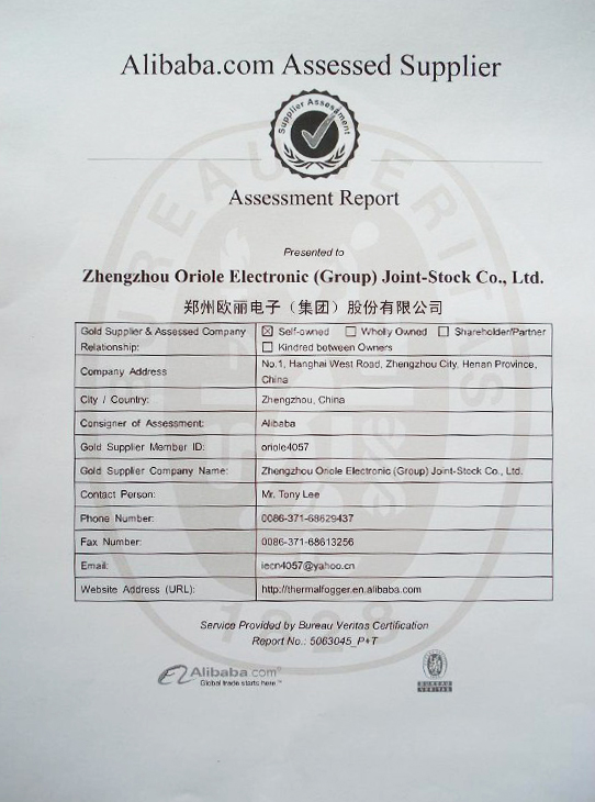 assessment-report